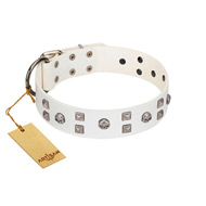 """Rock the Sky"" Durable FDT Artisan White Leather Siberian Husky Collar with Chrome-plated Decorations"