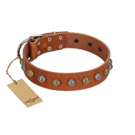 """Dogue-Vogue"" FDT Artisan Tan Leather Siberian Husky Collar with Engraved Chrome-plated Studs"