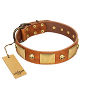 """Mutt The Daredevil"" FDT Artisan Tan Leather Siberian Husky Collar with Old Bronze-like Skulls and Plates"