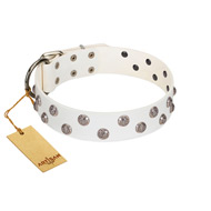 """Wild Flora"" FDT Artisan White Leather Siberian Husky Collar with Silver-like Engraved Studs"