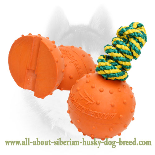 Siberian Husky Rubber Ball for Playing in Water