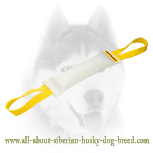 Large Toy for Training your Siberian Husky