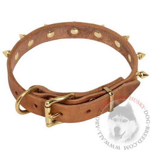Brass Spiked Leather Siberian Husky Collar