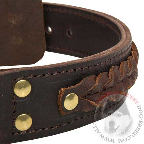Leather 2 Ply Siberian Husky Collar Brown Braided