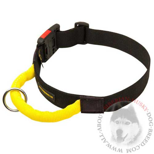 Nylon Dog Collar Adjustable with Quick Release Button