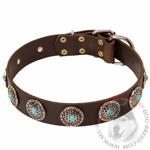 Walking Leather Dog Collar Stylish for Siberian Husky