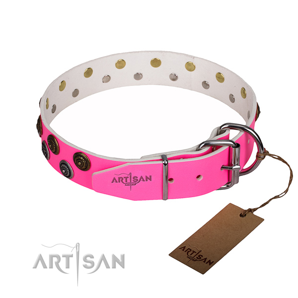 Everyday use natural genuine leather collar with embellishments for your canine