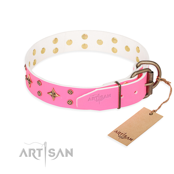 Daily use full grain leather collar with studs for your doggie