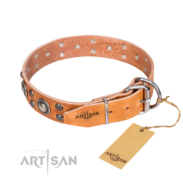 Everyday use genuine leather collar with embellishments for your four-legged friend