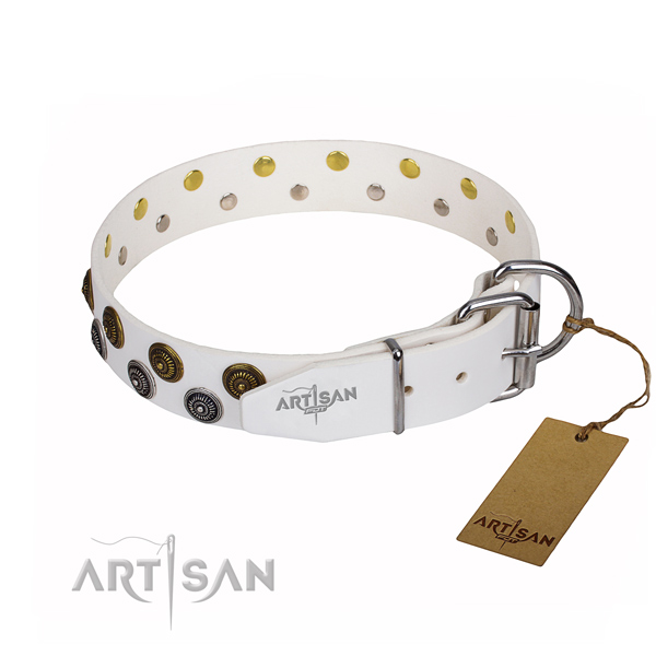 Stylish walking full grain genuine leather collar with embellishments for your dog