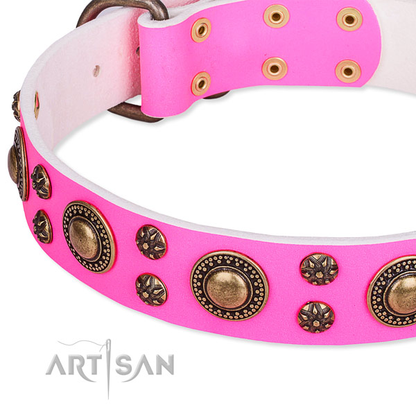 Natural genuine leather dog collar with unusual studs