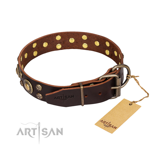 Daily walking genuine leather collar with embellishments for your pet