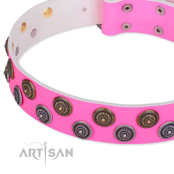 Full grain leather dog collar with top notch studs