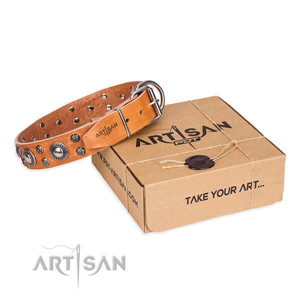 Awesome genuine leather dog collar for stylish walks