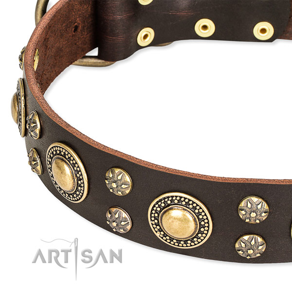 Leather dog collar with impressive decorations