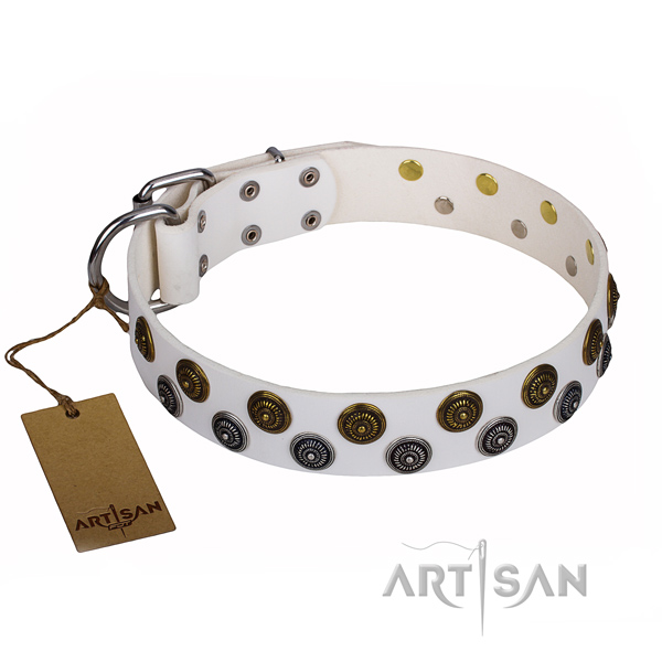 Unusual full grain leather dog collar for everyday walking