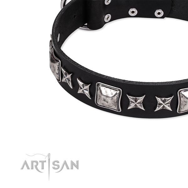 Full grain natural leather dog collar with exquisite embellishments