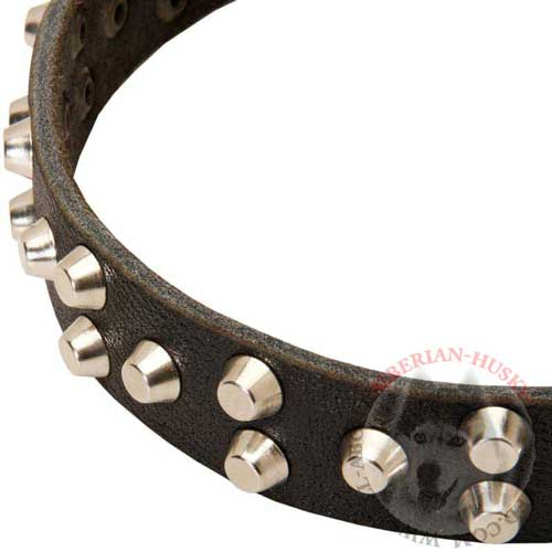 Leather Siberian Husky Collar Durable with Nickel-Plated Studs