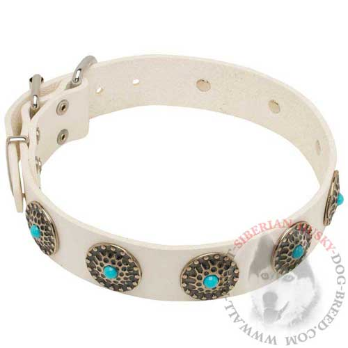 Siberian Husky Collar Leather for Daily Walking in Style