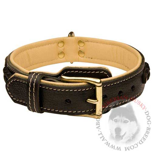 Leather Fashionable Dog Collar for Siberian Husky