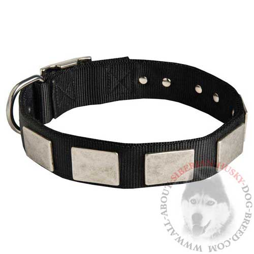 Siberian Husky Nylon Collar for Walking and Training