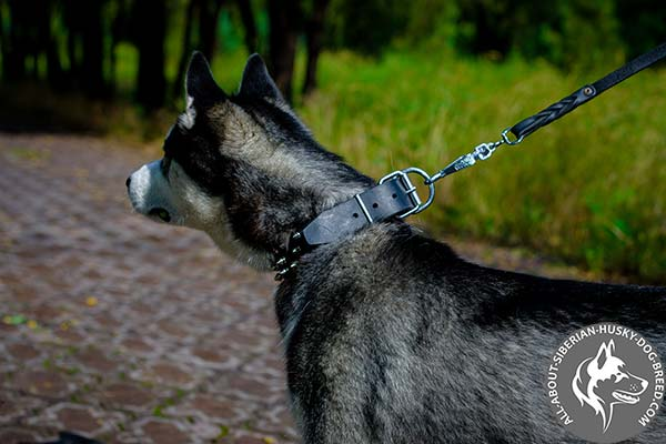 Easy-to-adjust Leather Dog Collar with Nickel-plated Hardware