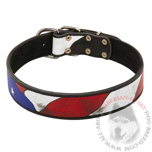 Painted Leather Collar for Siberian Husky Walking in Style