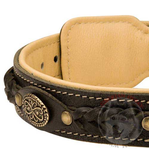 Siberian Husky Collar Leather Handmade for Dog Walking