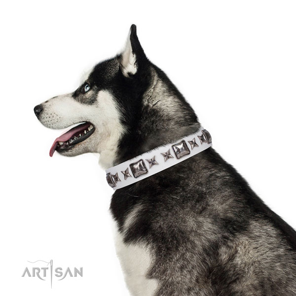 Unique decorated natural leather dog collar for comfortable wearing