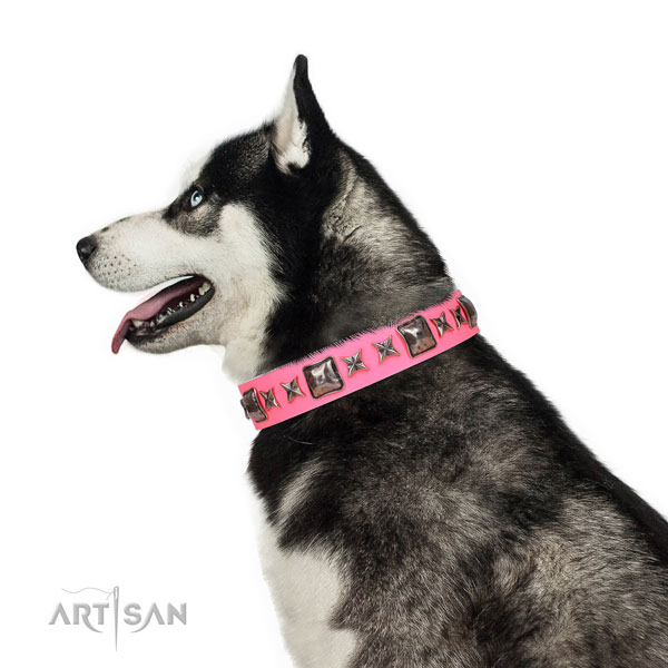 Stylish embellished leather dog collar for comfy wearing