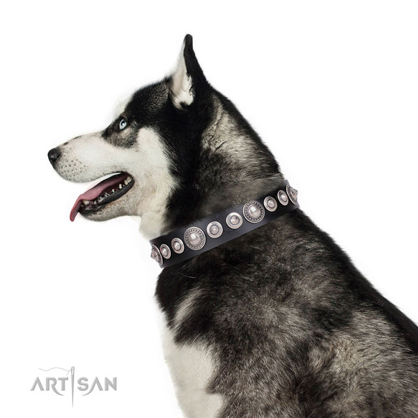 Stylish decorated natural leather dog collar for comfortable wearing