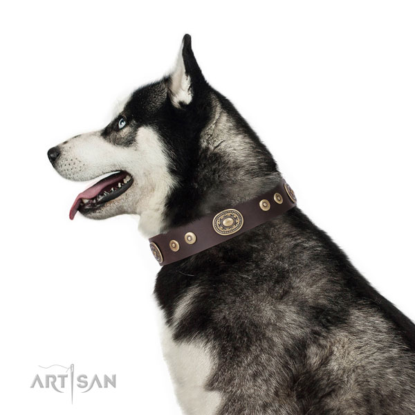 Unusual adorned leather dog collar for handy use