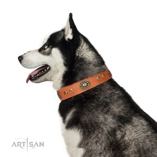 Extraordinary embellished natural leather dog collar for handy use