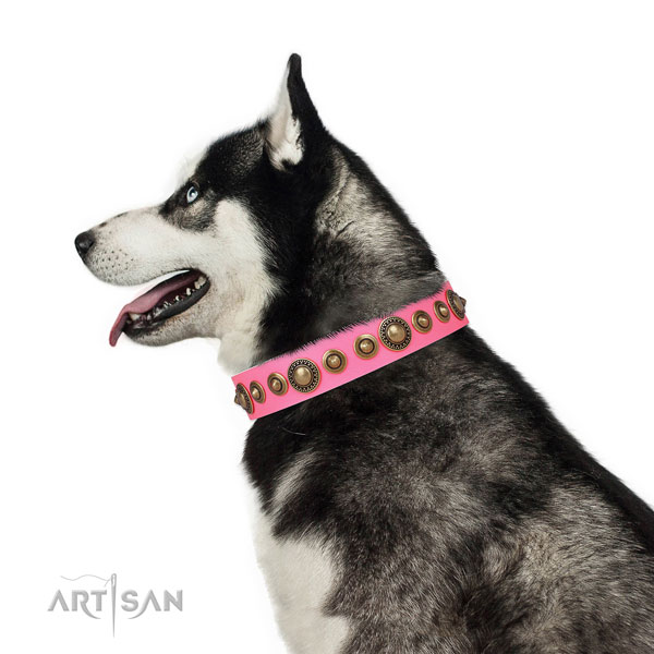 Strong buckle and D-ring on genuine leather dog collar for daily walking