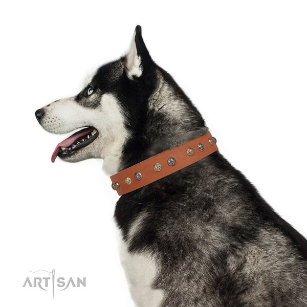 Natural leather dog collar with corrosion proof buckle and D-ring for everyday walking