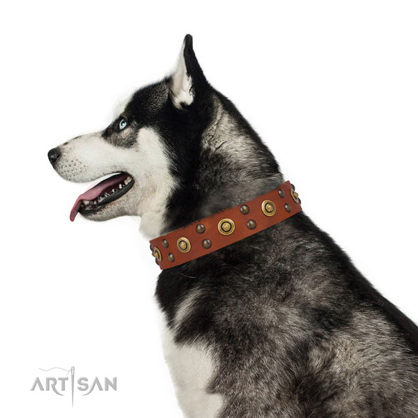 Basic training dog collar with exquisite adornments