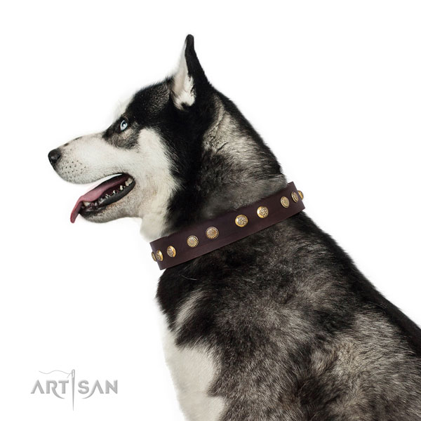 Stunning embellishments on basic training natural genuine leather dog collar