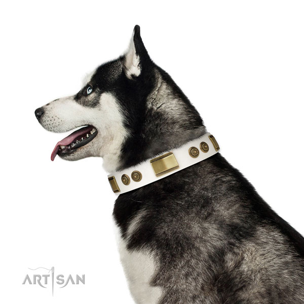 Strong daily walking dog collar of leather
