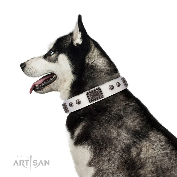 Handmade full grain leather collar for your attractive dog