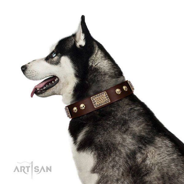 Strong fittings on full grain natural leather dog collar for walking
