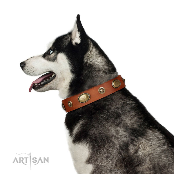Easy wearing dog collar of genuine leather with stylish adornments