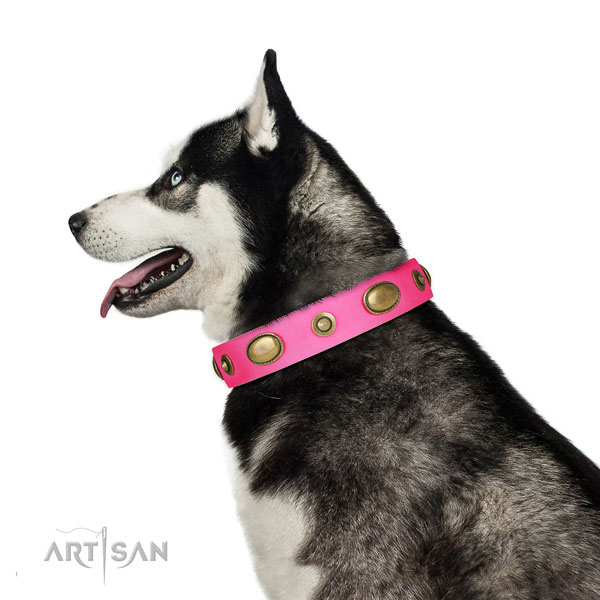 Handy use dog collar of leather with incredible adornments