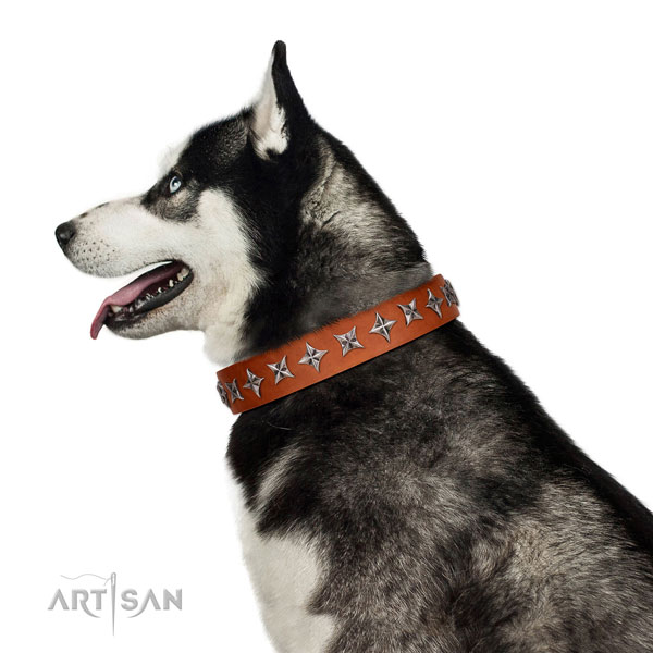 Best quality full grain natural leather dog collar with unusual adornments
