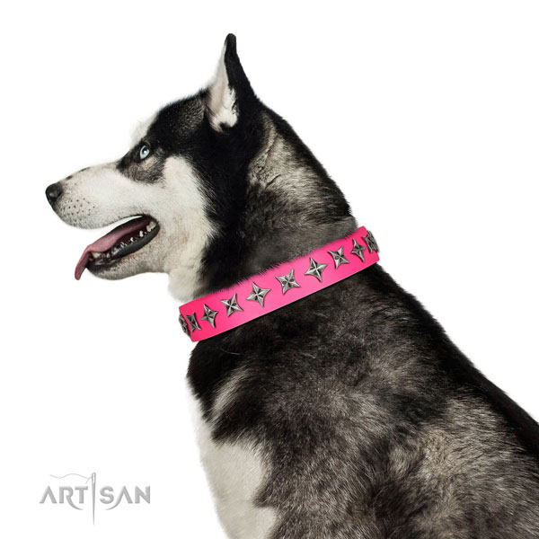 Finest quality leather dog collar with extraordinary decorations