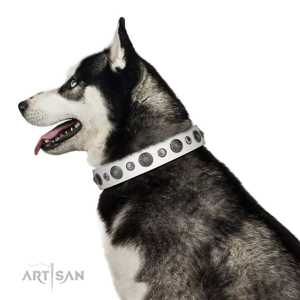 Adjustable leather dog collar with rust-proof fittings