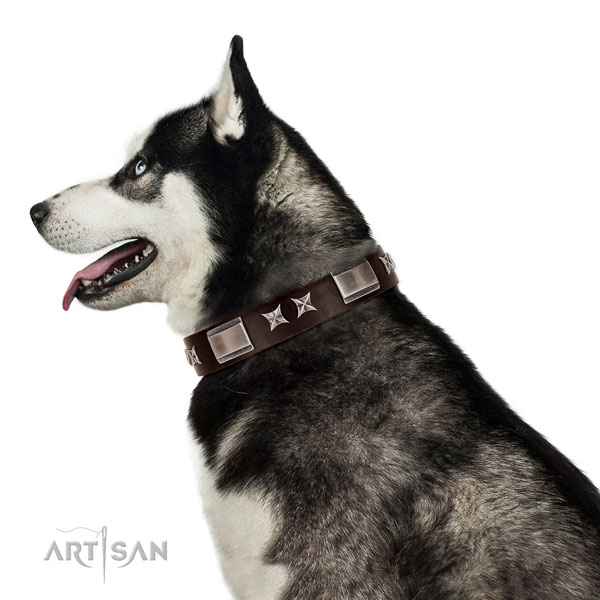 Fine quality collar of full grain leather for your impressive doggie