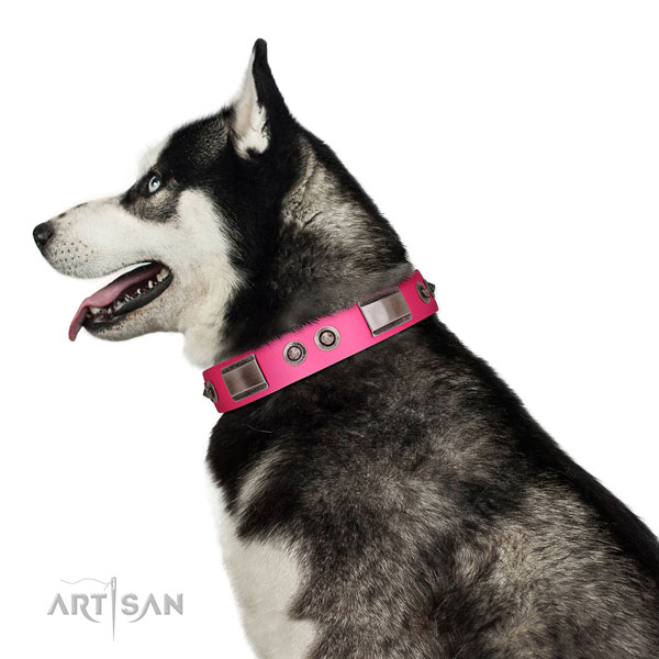 Perfect fit full grain leather dog collar with adornments