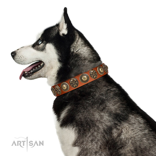 Stylish genuine leather collar for your stylish doggie
