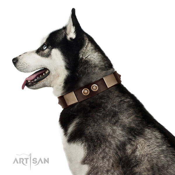 Strong buckle on leather dog collar for easy wearing