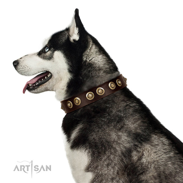 Rust resistant D-ring on natural genuine leather dog collar for stylish walking